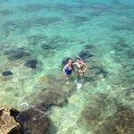 Snorkeling at the hotel's backyard