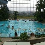 trés grande piscine