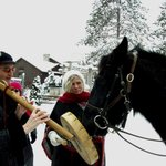 Christmas Day Horses Join in Music of Mediation