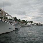 Dive Boats