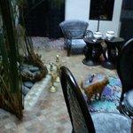 patio interno con fuente