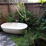 Our bath tub in open garden