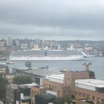 Cruise ship just passed beneath Harbour Bridge and heading to sea