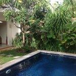 Villa 7 - nager sous les frangipaniers