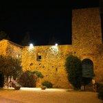 Castello (particolare)