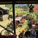 garden and shade in Samari Bhanjyang