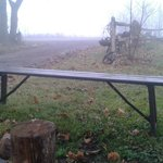 Antique bench on the front lawn