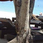 Relaxing @ Beach