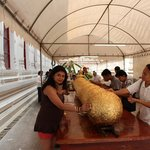 Wat Mahathat_Dev_Shona