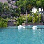 vue vers la piscine depuis notre chambre la 305