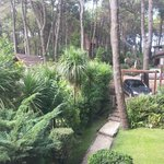 Photo of Cabanas Del Bosque