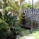 En una parte del jardín.