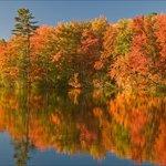 Maine's spectacular Fall foliage