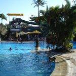 piscine a go-go