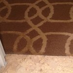 Carpet near bathroom