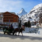 From the Village of Zermatt