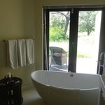 fabulous oval tub w/view