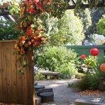 Enjoy our gardens