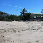 Garbage stored on beach