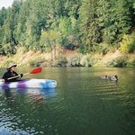Take a relaxing trip on the Russian River