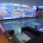 Swimming pool with aquarium video wall projection