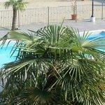 particolare piscina