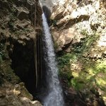 """Mario checking out the waterfall. His advice """"jump with feet first"""".  Best tour in Costa Rica. C"""