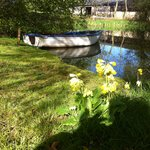The pond at Great Ashley Farm