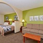 Guest Room- Suite