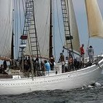 Windjammers in Boothbay Harbor.  Enjoy a sail!!