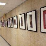 Shenandoah Showcase - Art at the Strasburg Town Hall