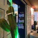 Cactus Jack.