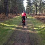 Bike riding in Thetford Forest
