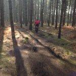 Singletrack Lime Burner trail