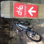 Well signposted singletrack