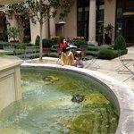 お庭の噴水、素敵!