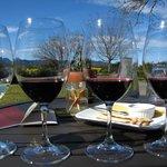 Wine tasting on the patio