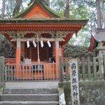 本日の最終の高原熊野神社、古木もあります。