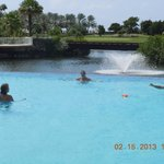 Divi Golf Pool