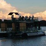 Photo de Taonga Safaris - Day Tours