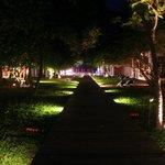 Le parc de nuit