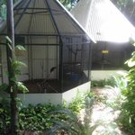 Bird cages at McAlpine House