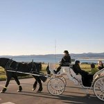 Horse drawn carriages passing by our oceanside heritage property
