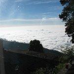 Morning Cloud Carpet seen below