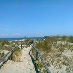 Percorso attraverso le dune