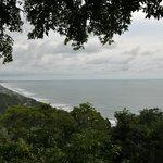 esta es la vista desde el canopy