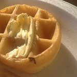 bug in waffle