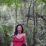 Dans la jungle pour tyrolienne