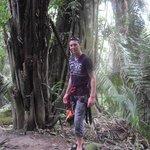 Dans la jungle tyrolienne