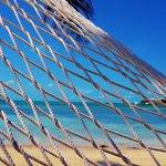 Sitting in a hammock @ Grabber's